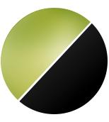 Schwarz-Streuscheibe Grün